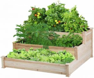 Best 7 Raised Garden Beds