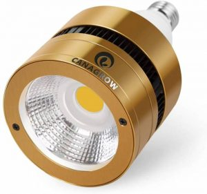 Cob Vs. Cree Led Lights What Are The Differences