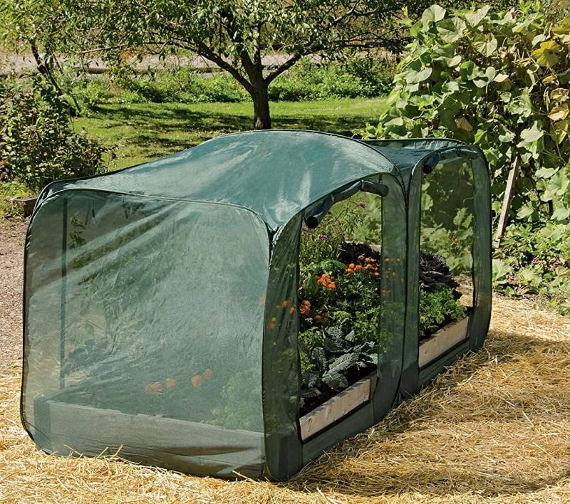 Gardener's Supply Company Tall Pest Control Pop Up, 4' x 4' for raised garden bed
