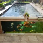 Koi Pond Glass – All You Need To Know About Koi Pond Window