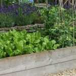 What To Put On The Bottom Of A Raised Garden Bed? - Guide