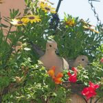How To Stop Birds From Nesting In Flower Pots?