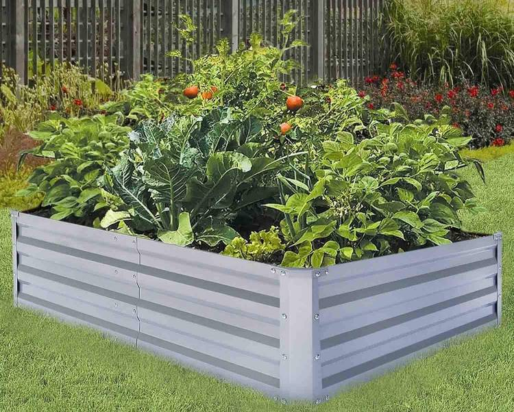 Best vegetables to grow in a small raised bed