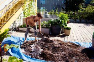 Does my garden need fertilizer