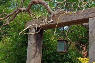 Best alternatives to garden gates