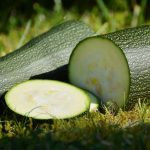 Why My Zucchini Plant Is Huge? (8 Reasons Explained)