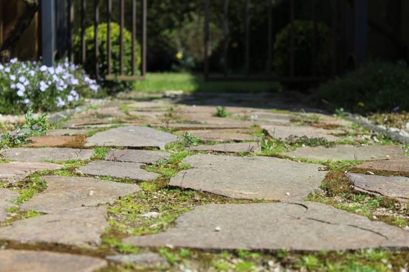 best alternatives to garden paving