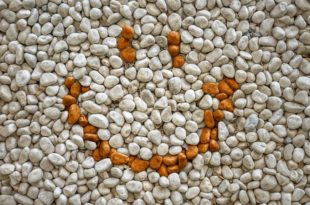 Best kinds of gravel for building a patio