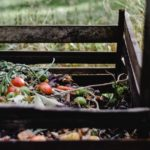 How Does Composting Help The Environment? [Gardening Facts]