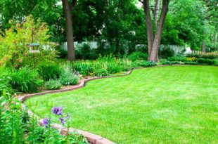 How to edge a lawn or a flower bed with a shovel