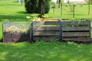 What is compost Used for