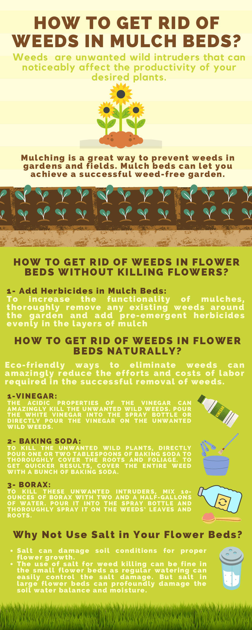 How to Get Rid of Weeds in Mulch Beds Infographic