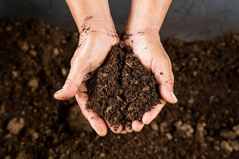 How to make a peat moss