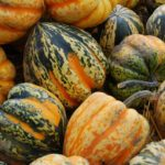 How To Tell If Acorn Squash Is Bad [Guide]