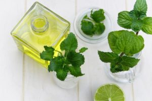 How to wash off neem oil off plants
