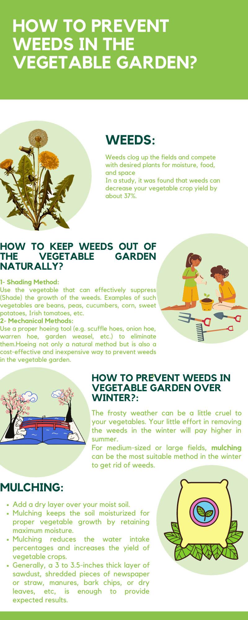 Ways to Prevent Weeds in the Vegetable Garden