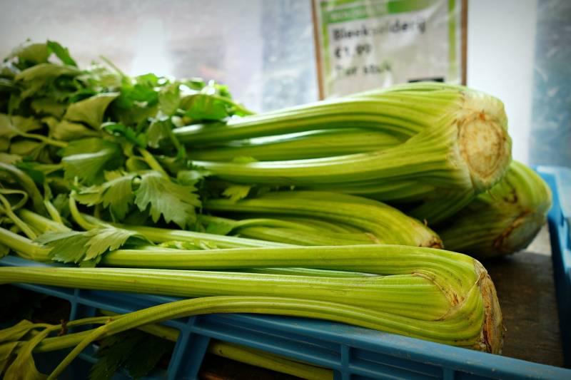 Where does Celery Grow Around The World